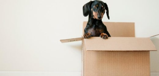 How to Move Your Home Cheaply and Safely